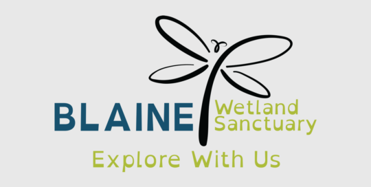 Blaine Wetland Sanctuary Logo Design