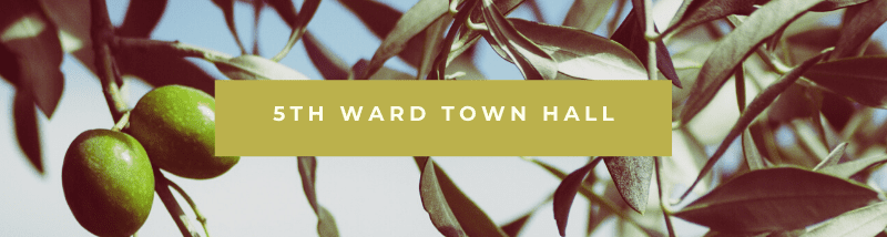 5th Ward Town Hall
