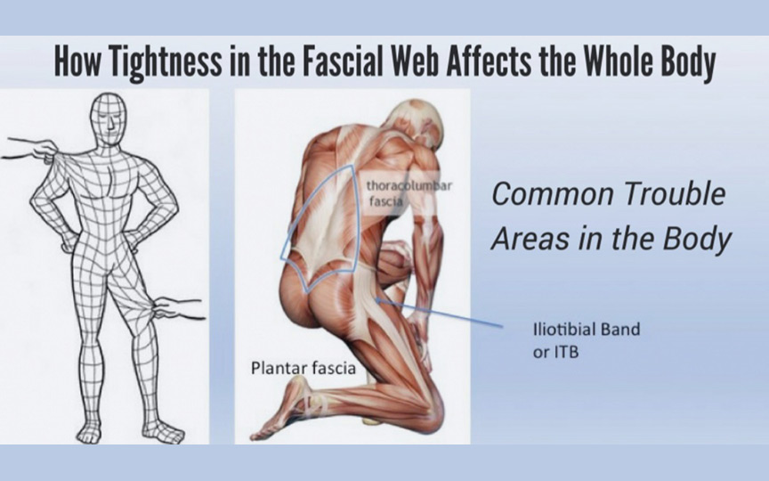 Myofascial Release Therapy (MFR)