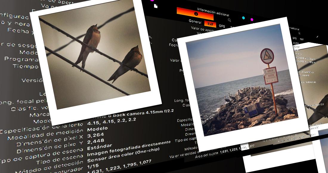 Qué son los metadatos de una fotografía, qué es preocupante de ellos y cómo utilizarlos