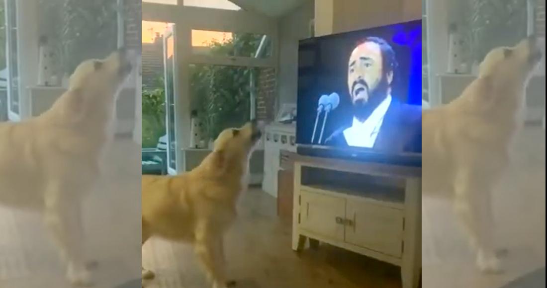 Hugo, un buen chico que adora cantar a dueto con Luciano Pavarotti