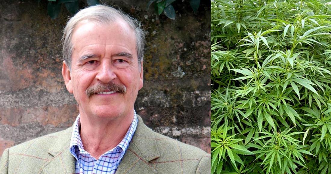 Fox, quien asegura que «vive al día» será socio inversionista de una empresa de cannabis