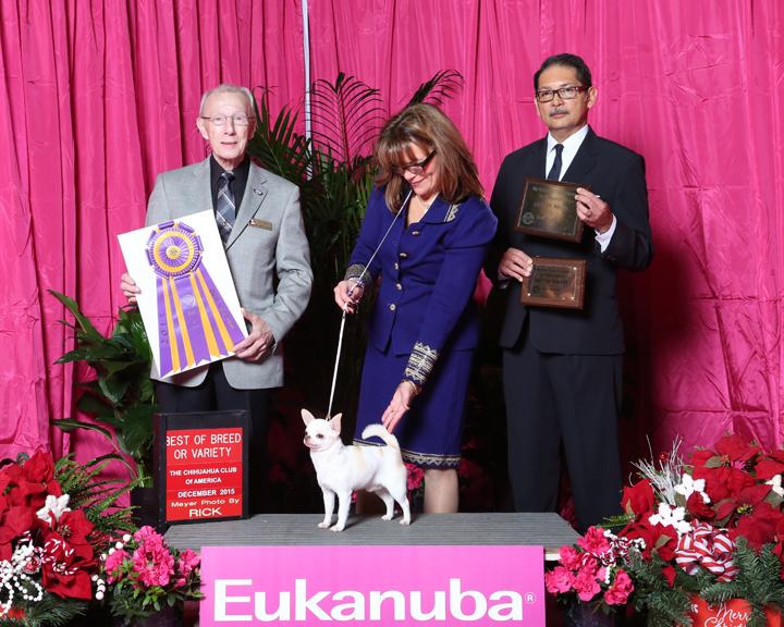 2015 CCA Regional – Eukanuba