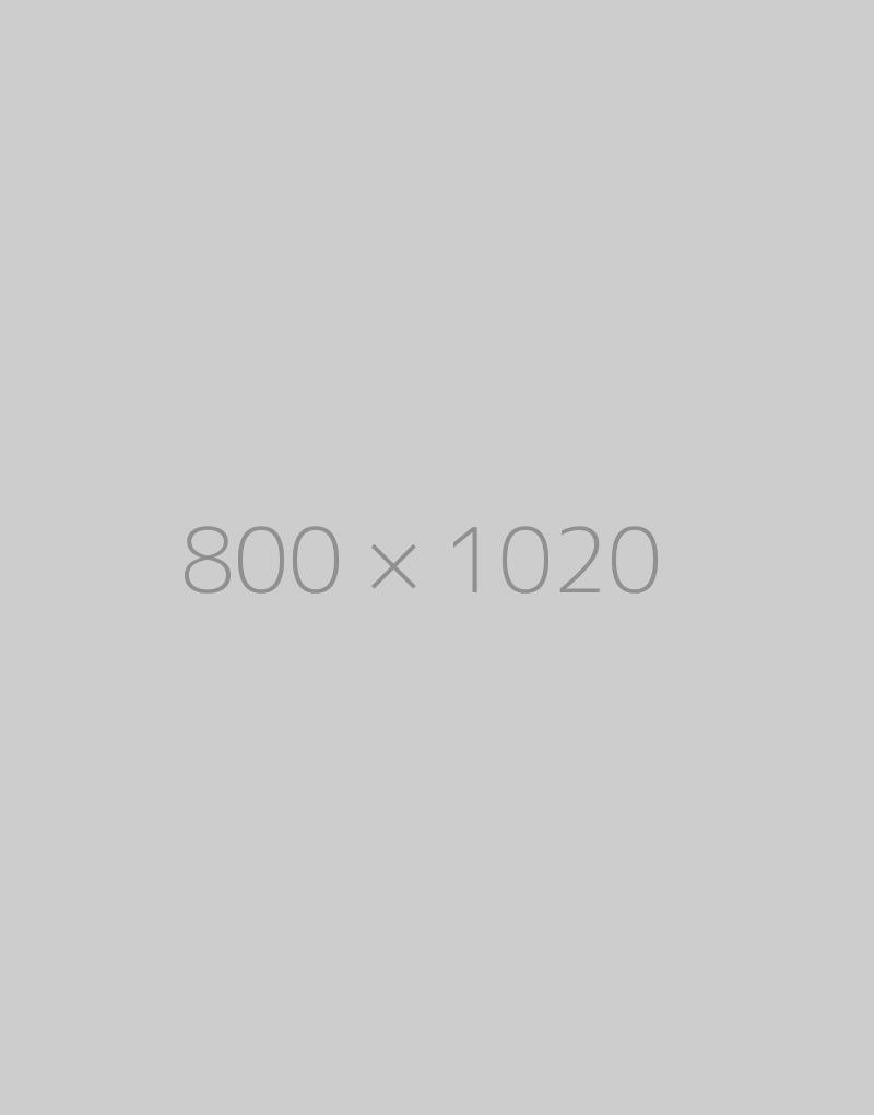 hongo 800×1020-ph
