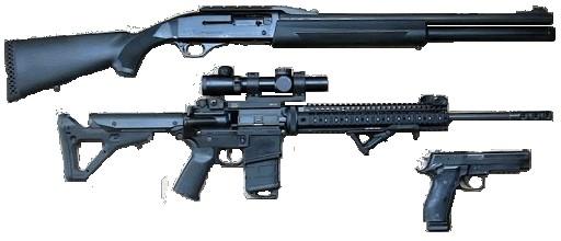 Handle & Use of Firearms