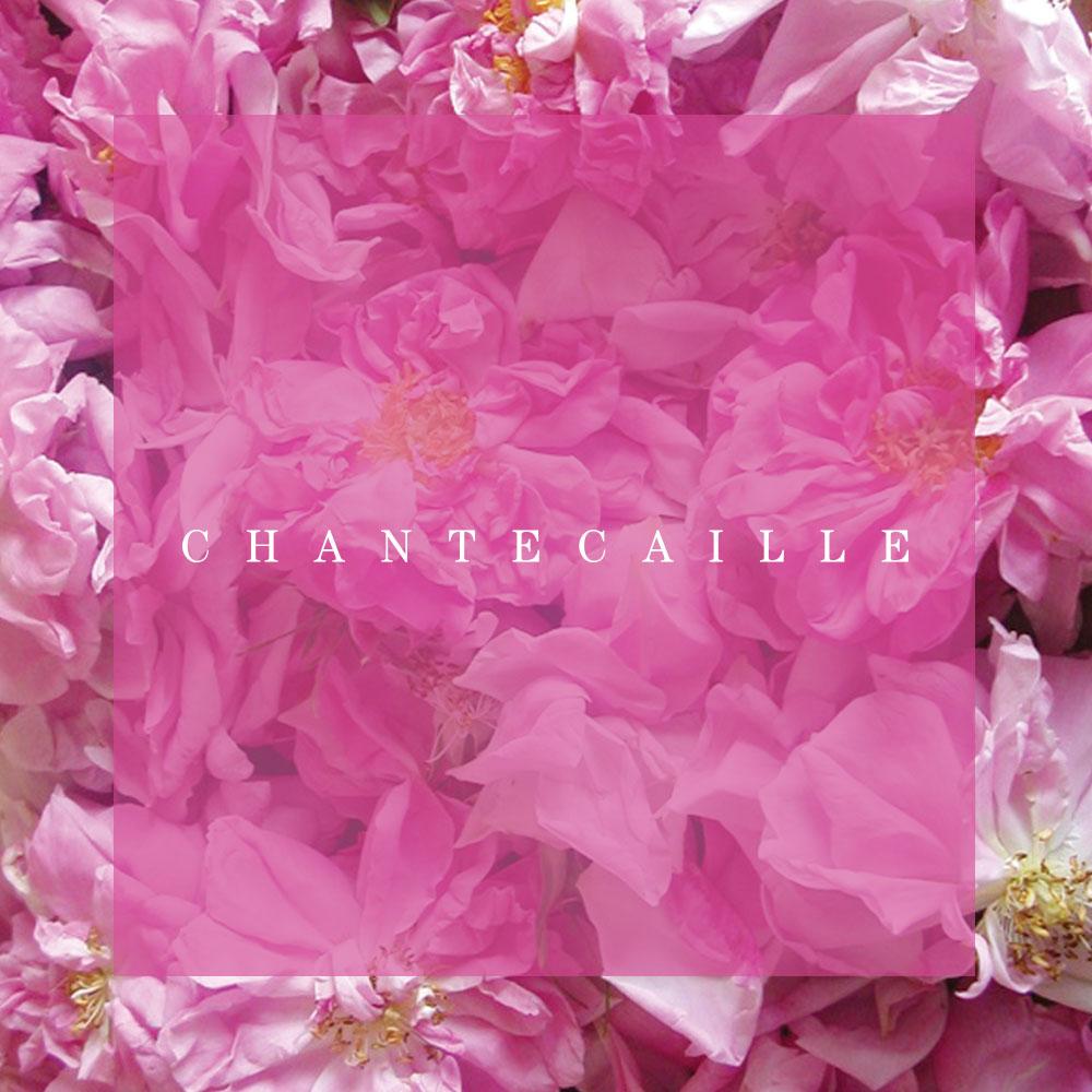 Chantecaille Skincare Ad
