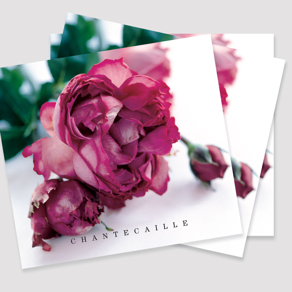 Chantecaille Skincare Booklet