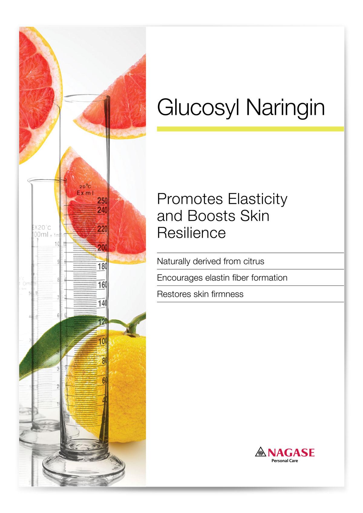 Nagase Brochure GN