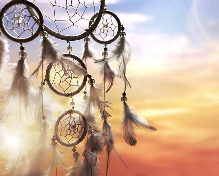 Dream Vision & Ideal Life