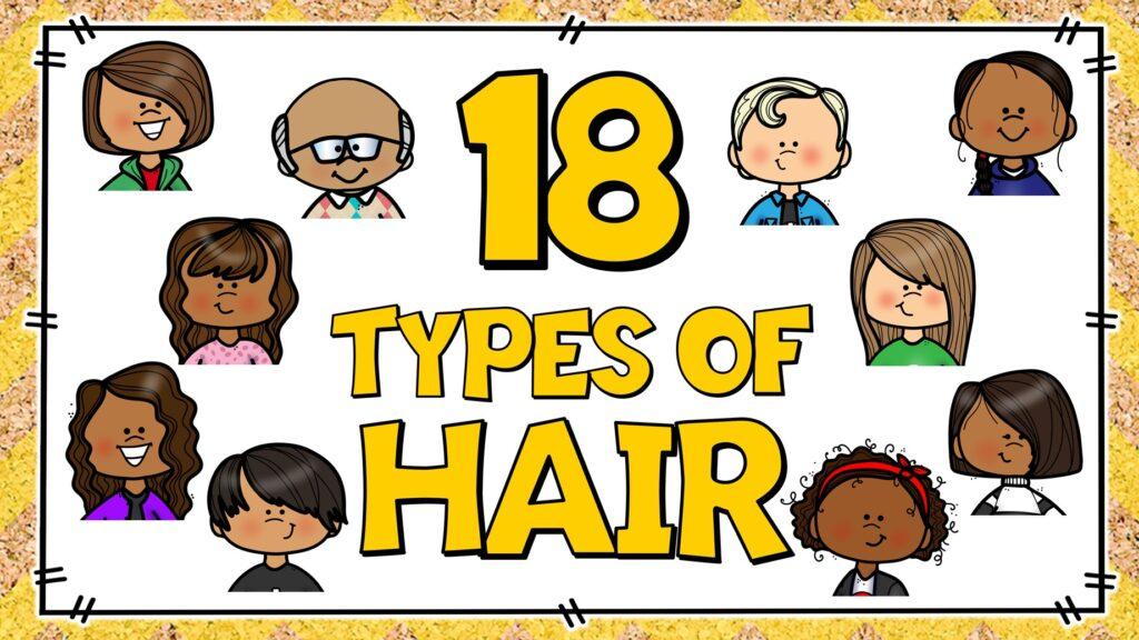 tipos de cabello en ingles