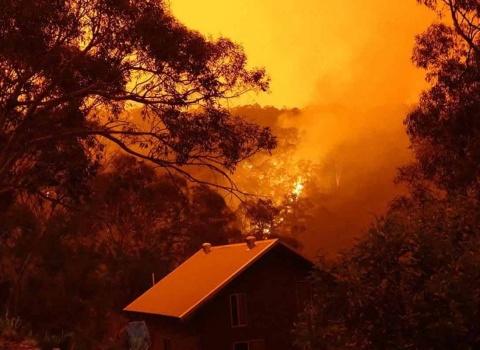 australia-wildfire-fund-(8)