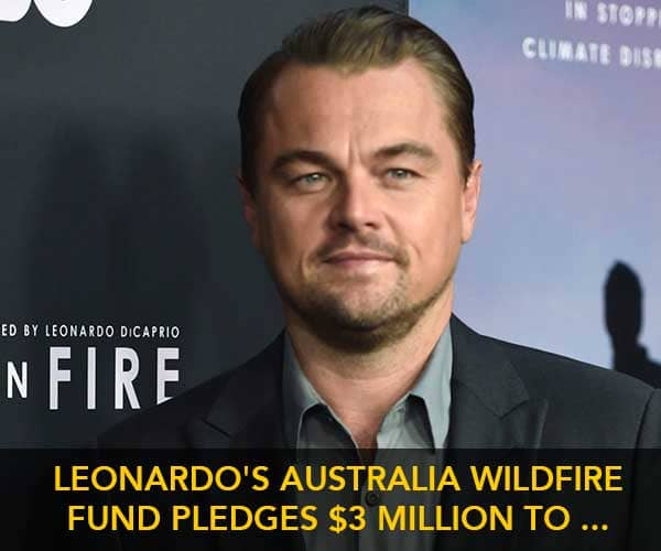 donate to australia bushfire relief funds