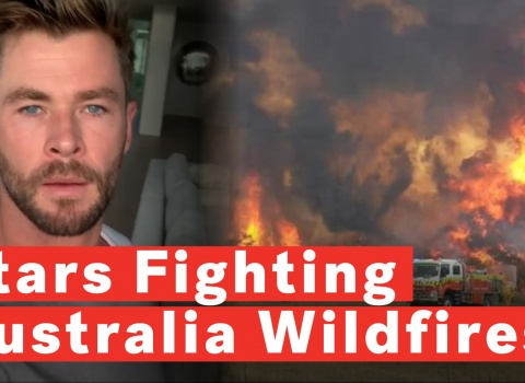 australia wildfire relief fund (17)