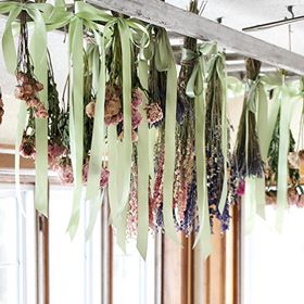 drying flowers workshop