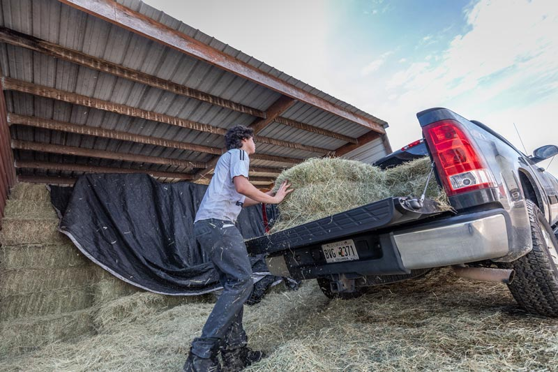 Aiken Saddlery and Supply