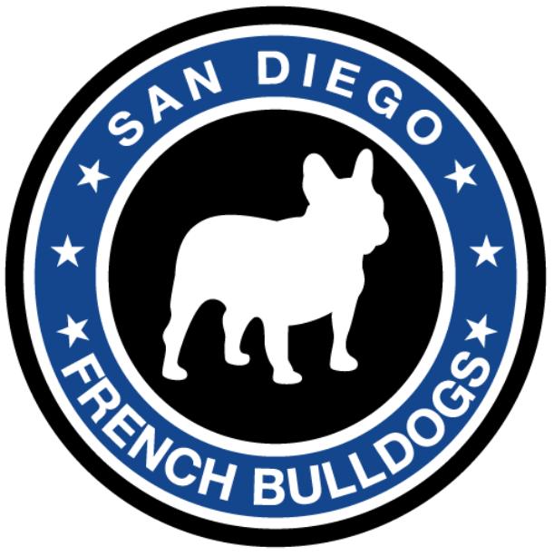 San Diego French Bulldogs