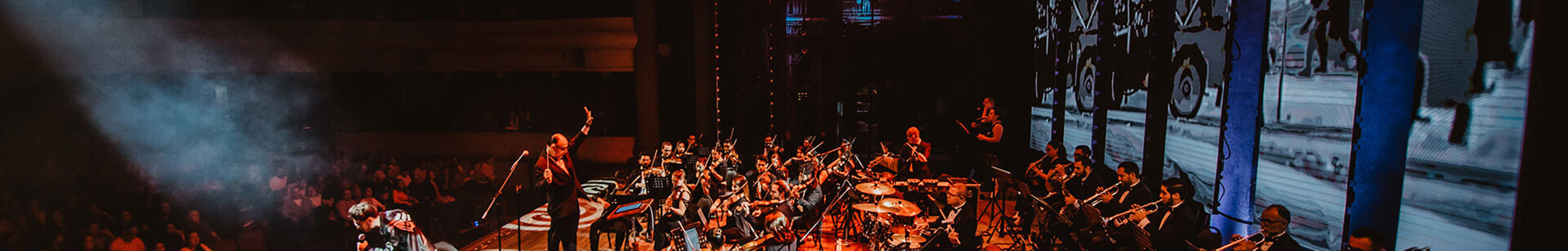 Philharmonic custom made shows.