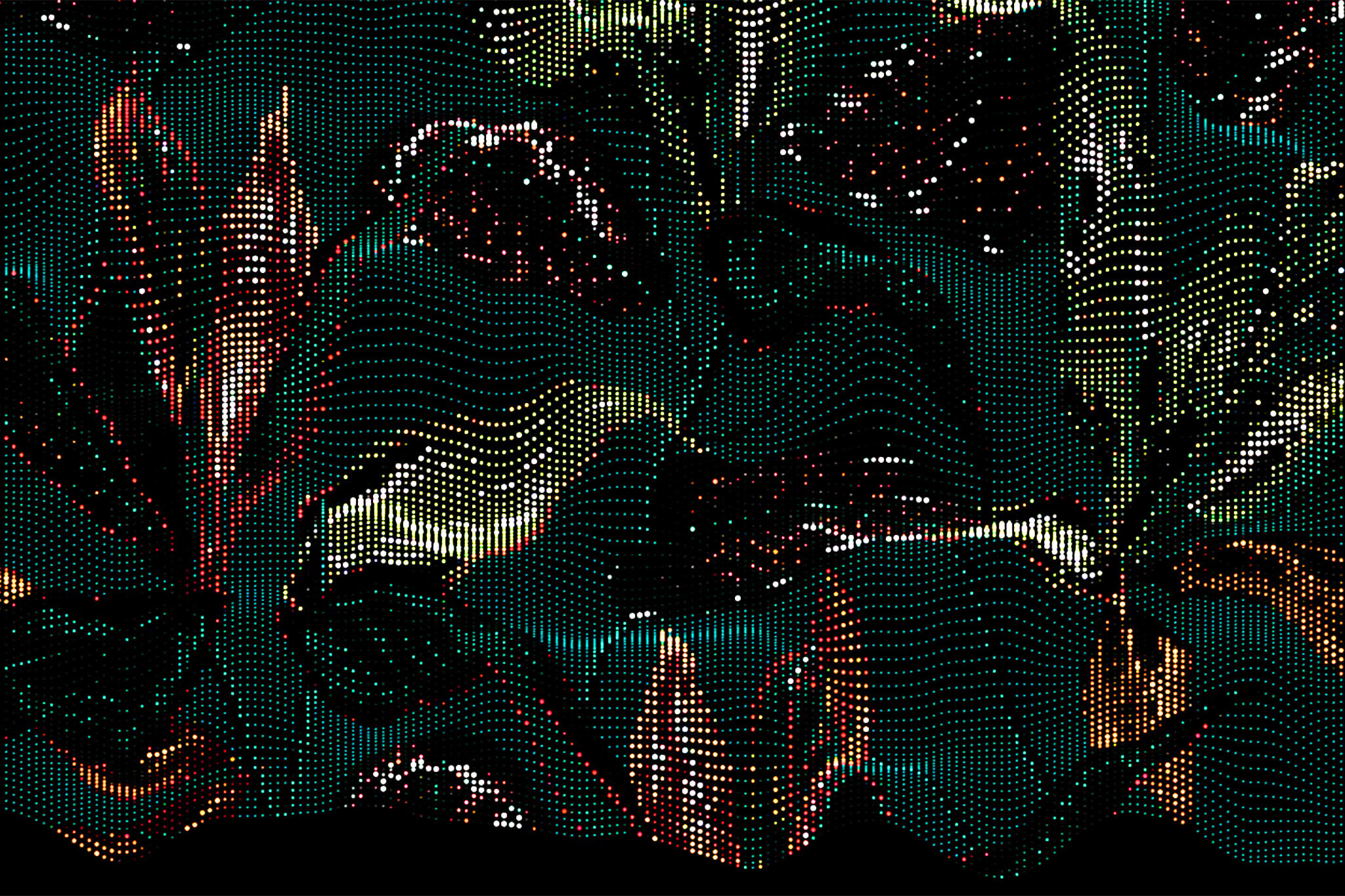 OUT CONTENT / Generative Graphics
