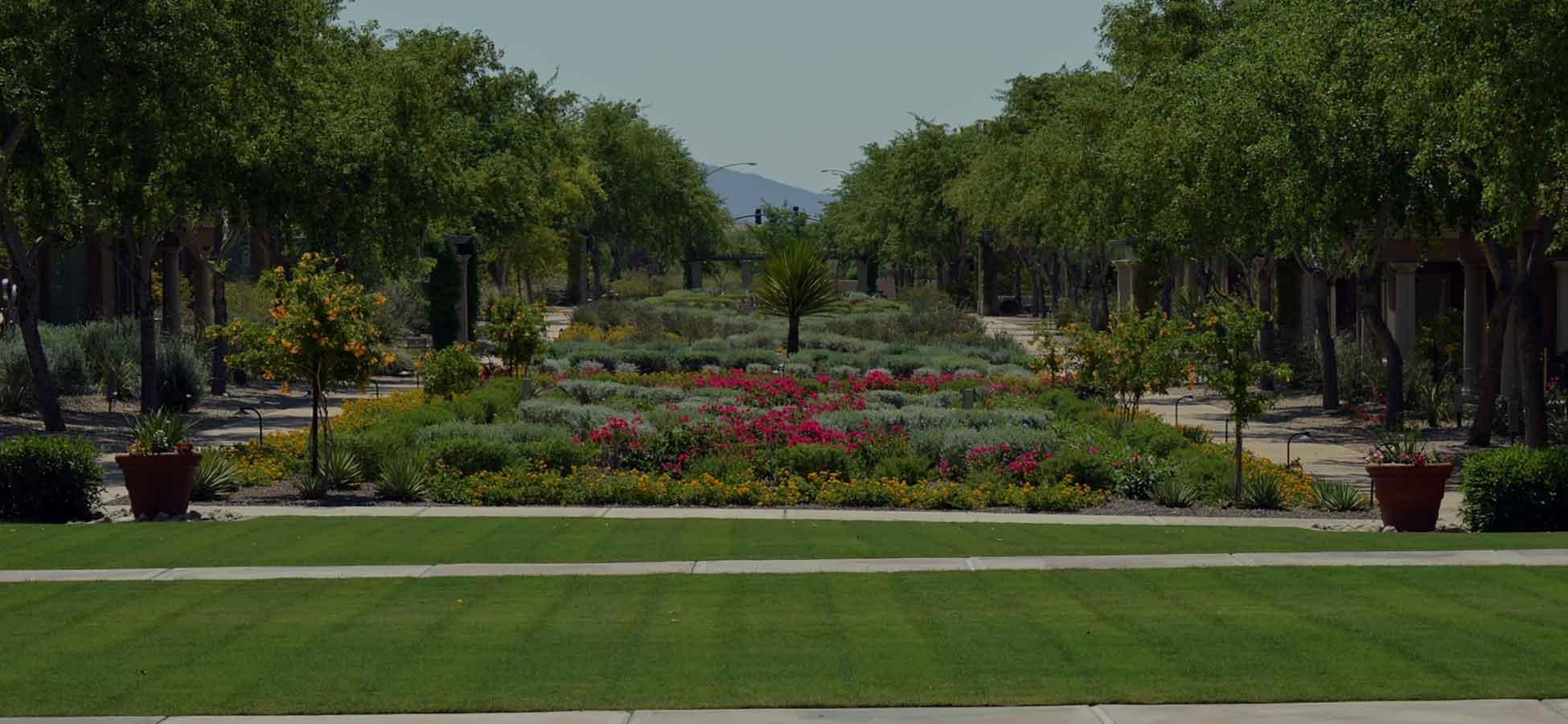 HOA Landscapers Phoenix AZ