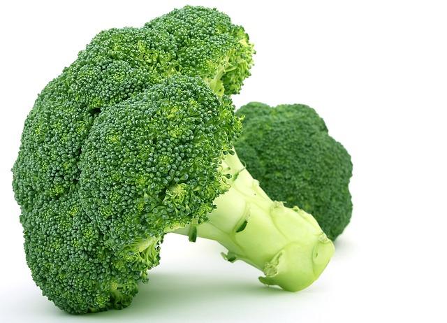 Dogs Eat Broccoli