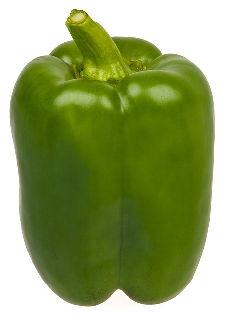 Dogs Eat Green Bell Peppers