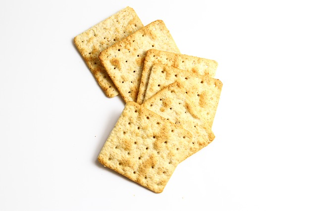 Dogs Eat Crackers