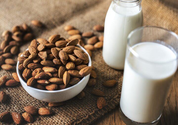 Dogs Eat Almond Milk