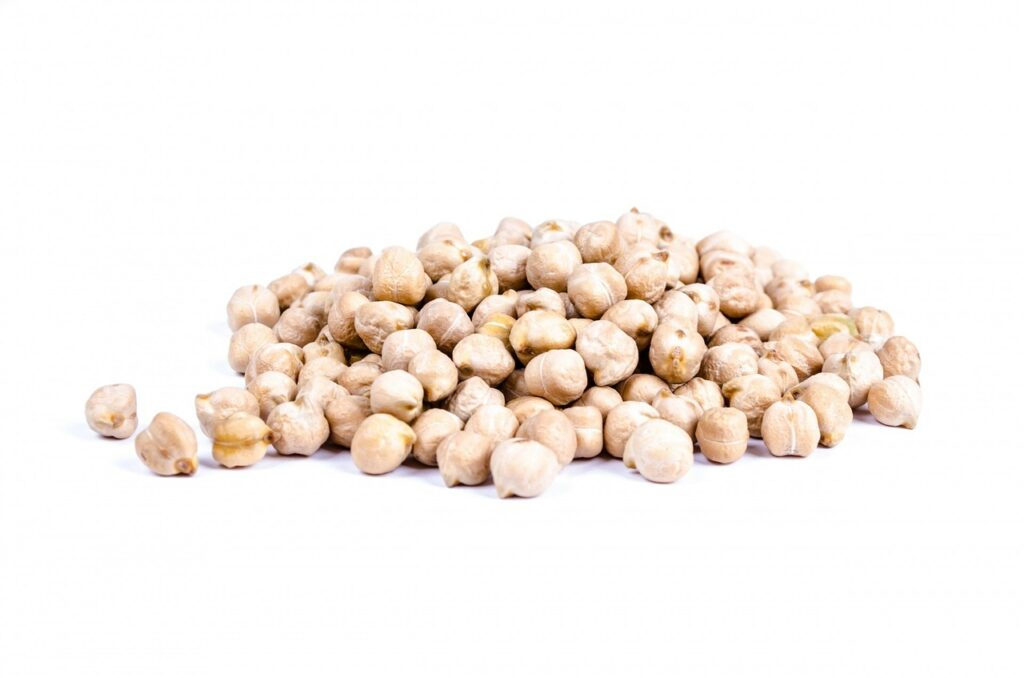 Dogs Eat Chickpeas