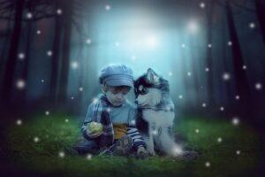 Husky and boy