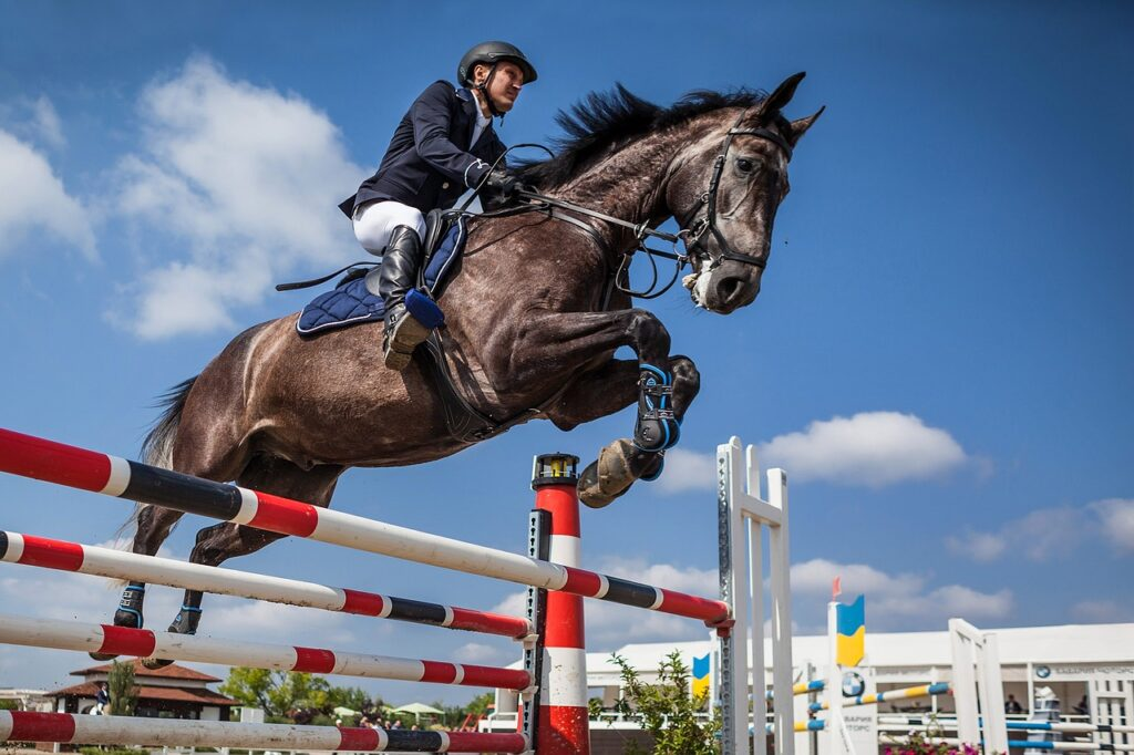 Jumping in Horseback Riding