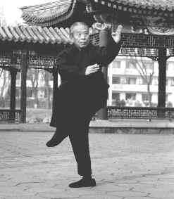 Master Wang Bagua Piercing Palm