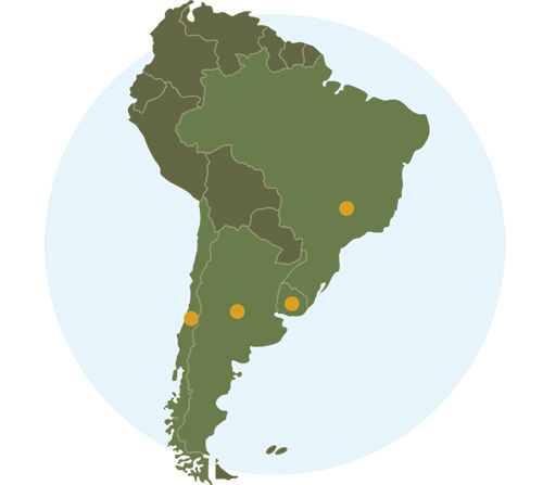 wines from south america