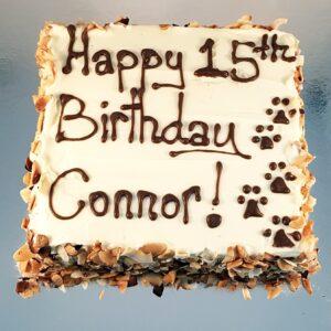 carob square cake