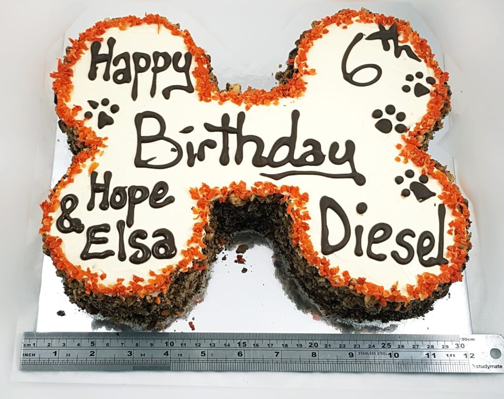 dog birthday cake large bone carrot w trim