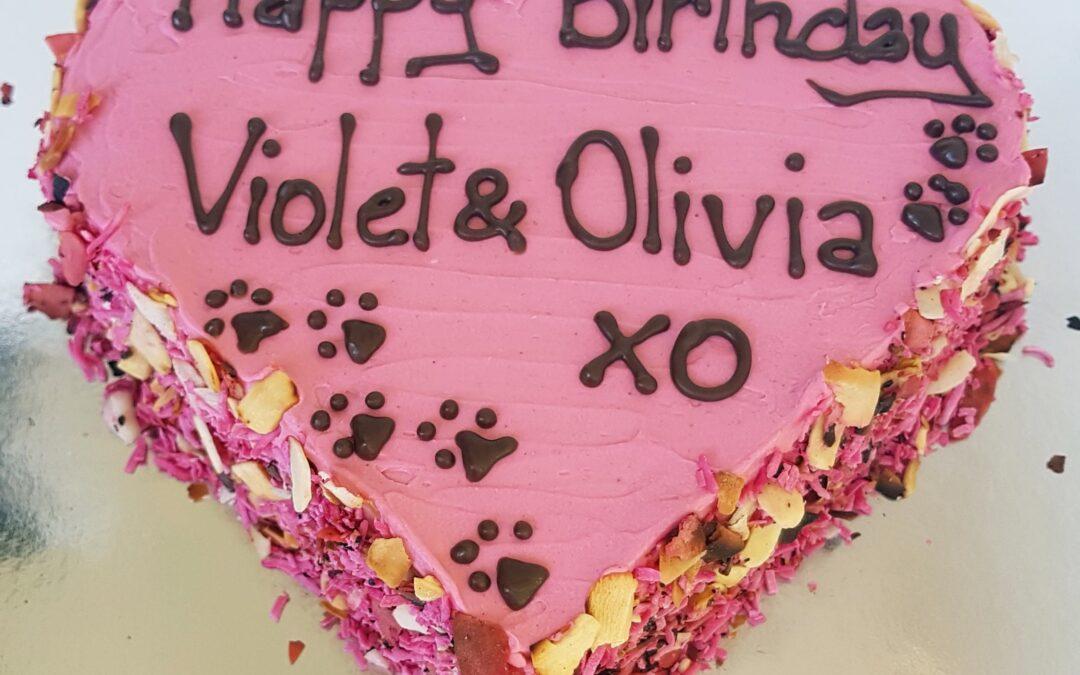 Best Dog Birthday Cakes