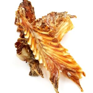 Dried Crocodile Rib