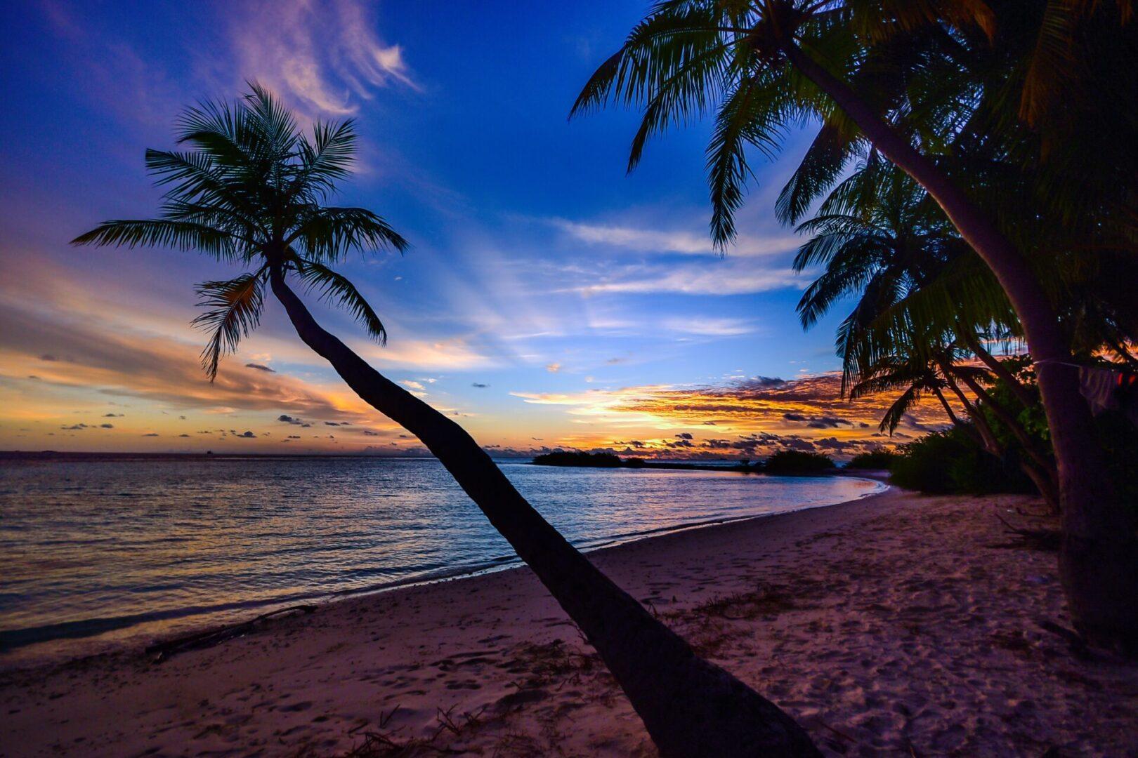 pexels-asad-photo-maldives-457876 (2)