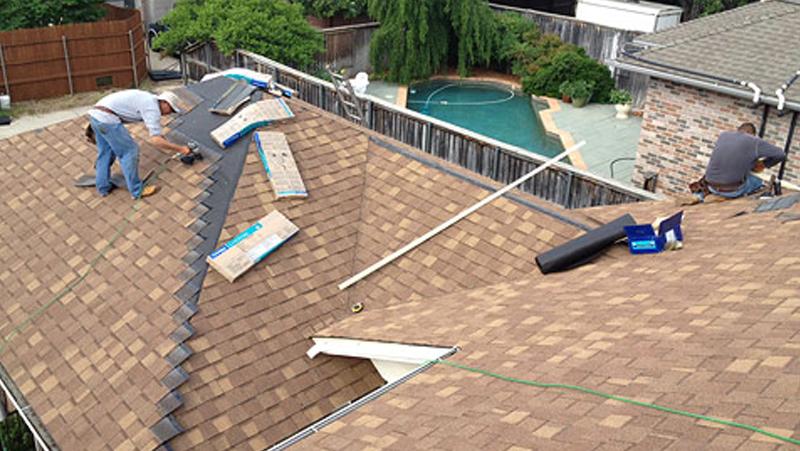 Shannen Roof