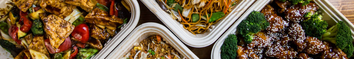 catering ses chic lo mein fr tofu veg (1)