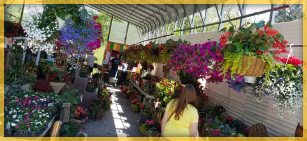Economic Development in the Laurel Highlands