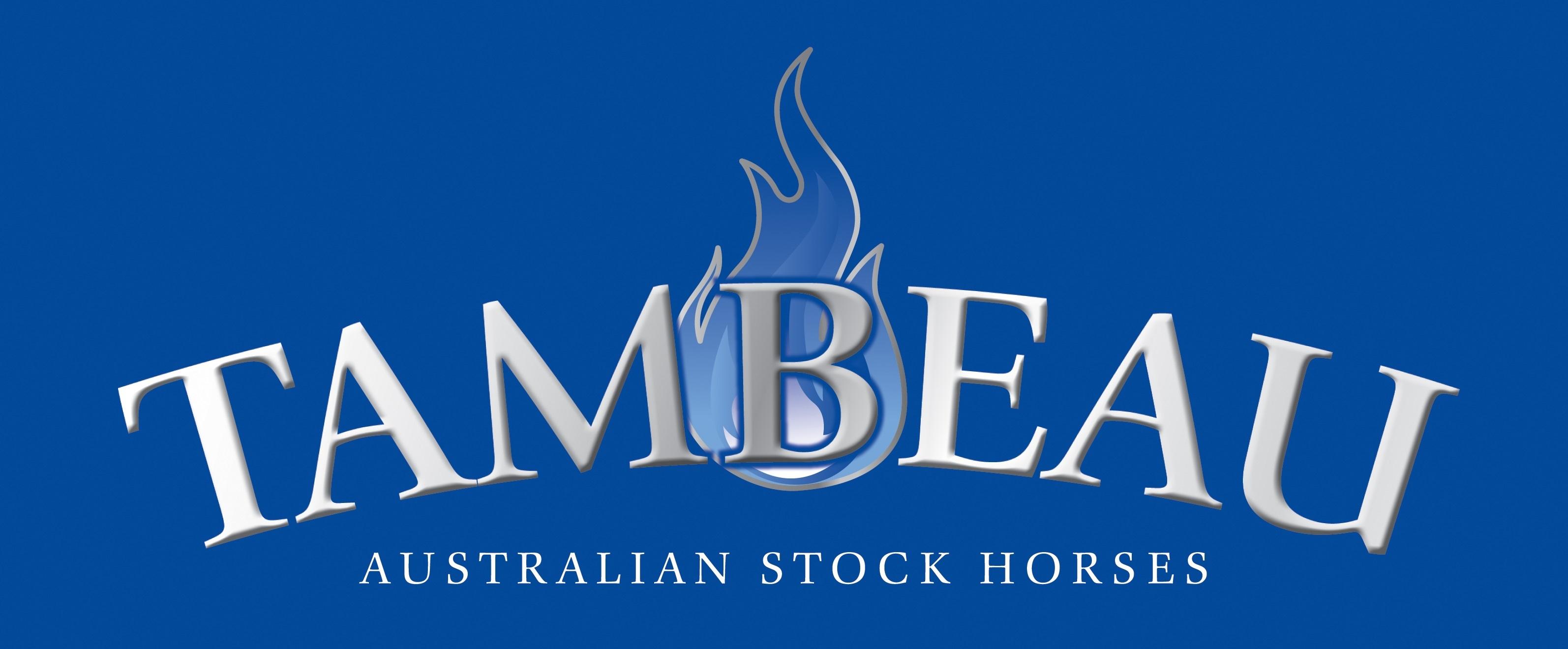 Tambeau Australian Stock Horses