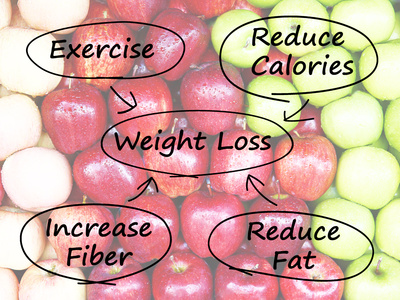 What Does Fiber have to do with Weight Loss/Management/?