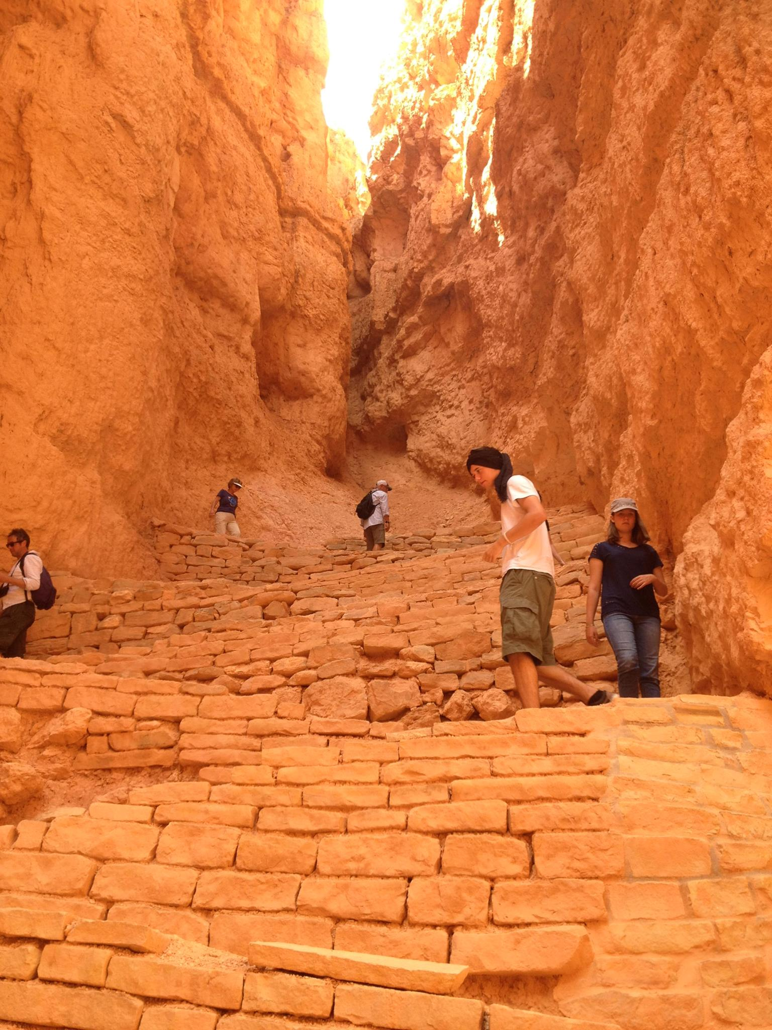 Descending Down the Stairs of the Navajo Loop Trail | Bryce Canyon