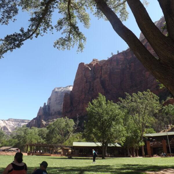 View from Zion Lodge   Zion N.P.