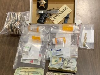 Drugs, cash and a .380 handgun were confiscated after an early morning raid near Chadbourn. (CCSO Photo)
