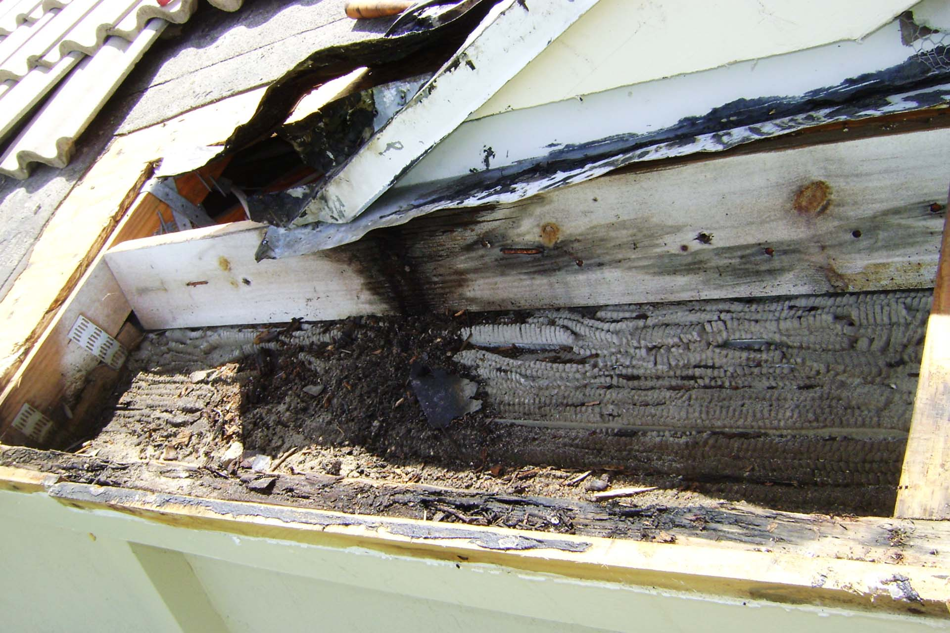 roof leaks repair fort lauderdale