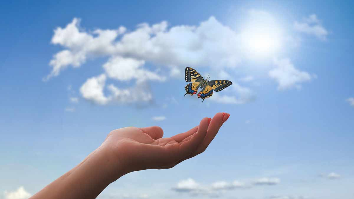 Chicago Reiki - hand raised to the sky with a butterfly fluttering above