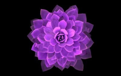 Chicago Reiki: What Do You Learn in Reiki Level 2?