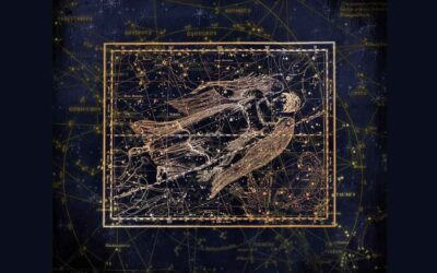 Chicago Reiki and Astrology: Virgo Season 2021