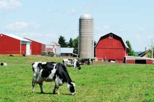 Electric Services - Commercial Residential Farm Agricultural